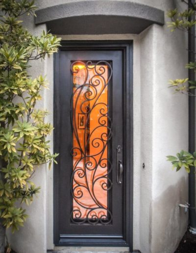 Narrow Black Iron Single Door Design